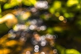 Image Result For Cb Edit Background Hd Blur Adobe Photoshop