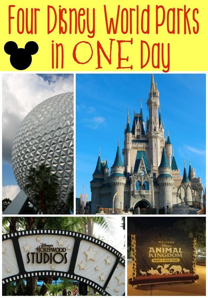 Tips for Visiting All Disney World Parks in ONE Day | All Things