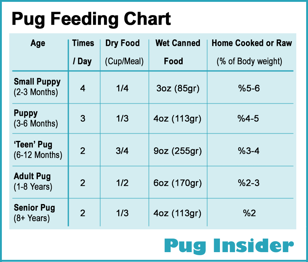 How To Feed My Pug What And Often Insider Puppies Puppy Growth Chart Dog Feeding