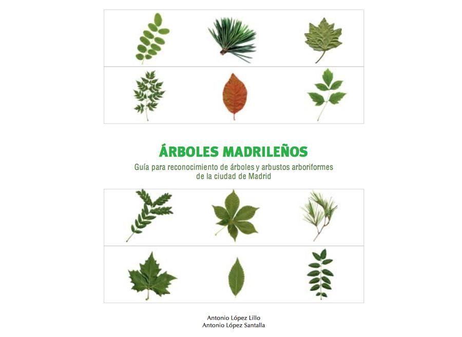 Resultado de imagen de arboles madrileños pdf