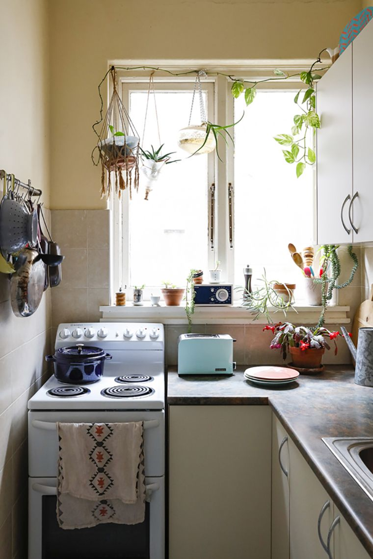 Plantas dentro de casa e por todos os lados | Kitchens, Apartments ...