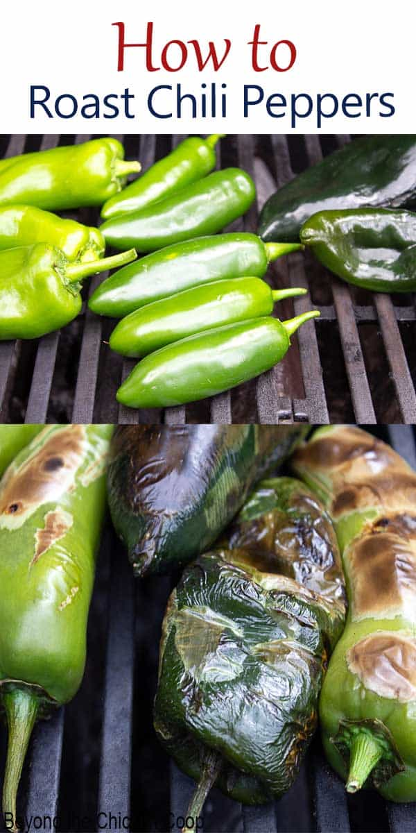 Roasting And Freezing Chili Peppers Recipe In 2020 Stuffed Peppers Summer Grilling Recipes Summer Dinner Recipes Grill