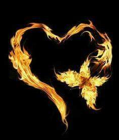 Burning butterflies heart