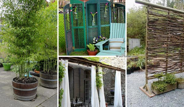 Inexpensive Backyard Privacy Ideas Janielinsmith Small