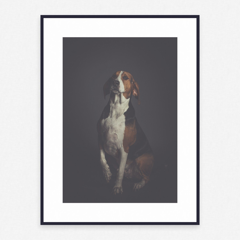 Dog Poster #215