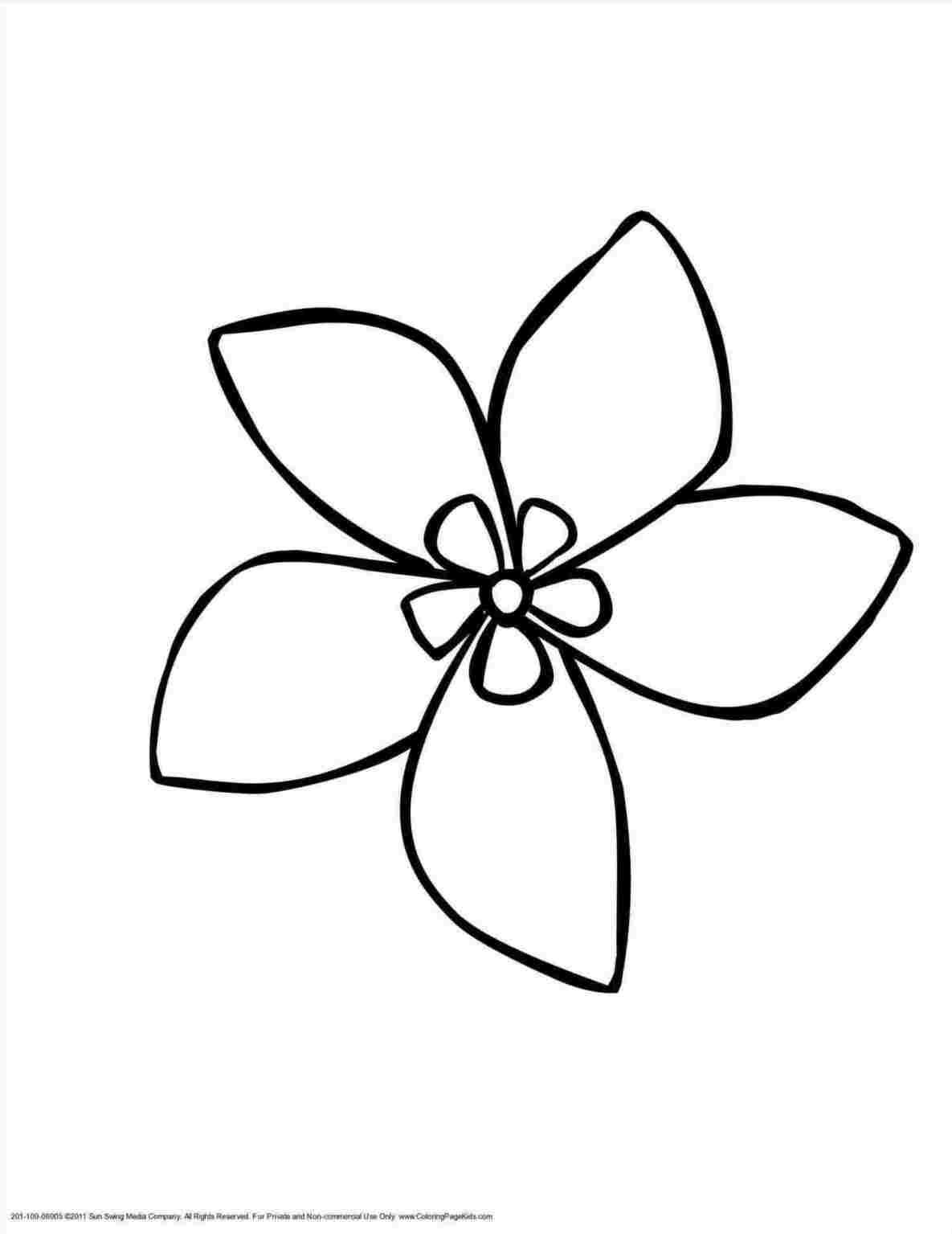 Easy Flowers Drawing Sketch Drawing Hawaiian Flower Drawing Flower Drawing Cute Flower Drawing