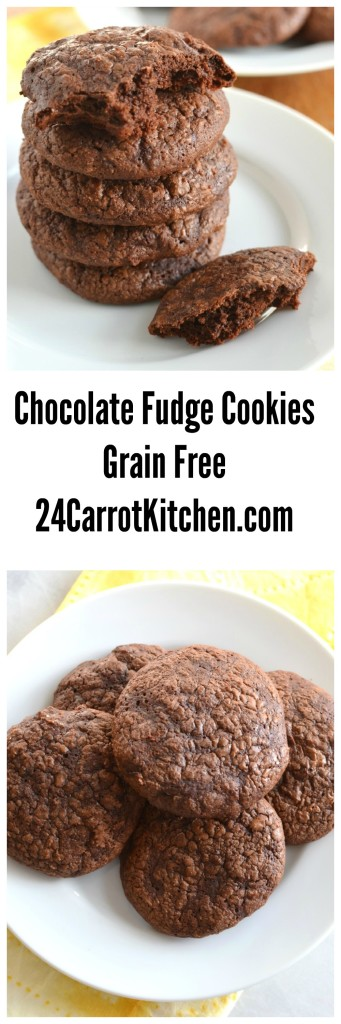 Click the photo to learn how to make these easy, delicious grain free, gluten and dairy free, cookies.