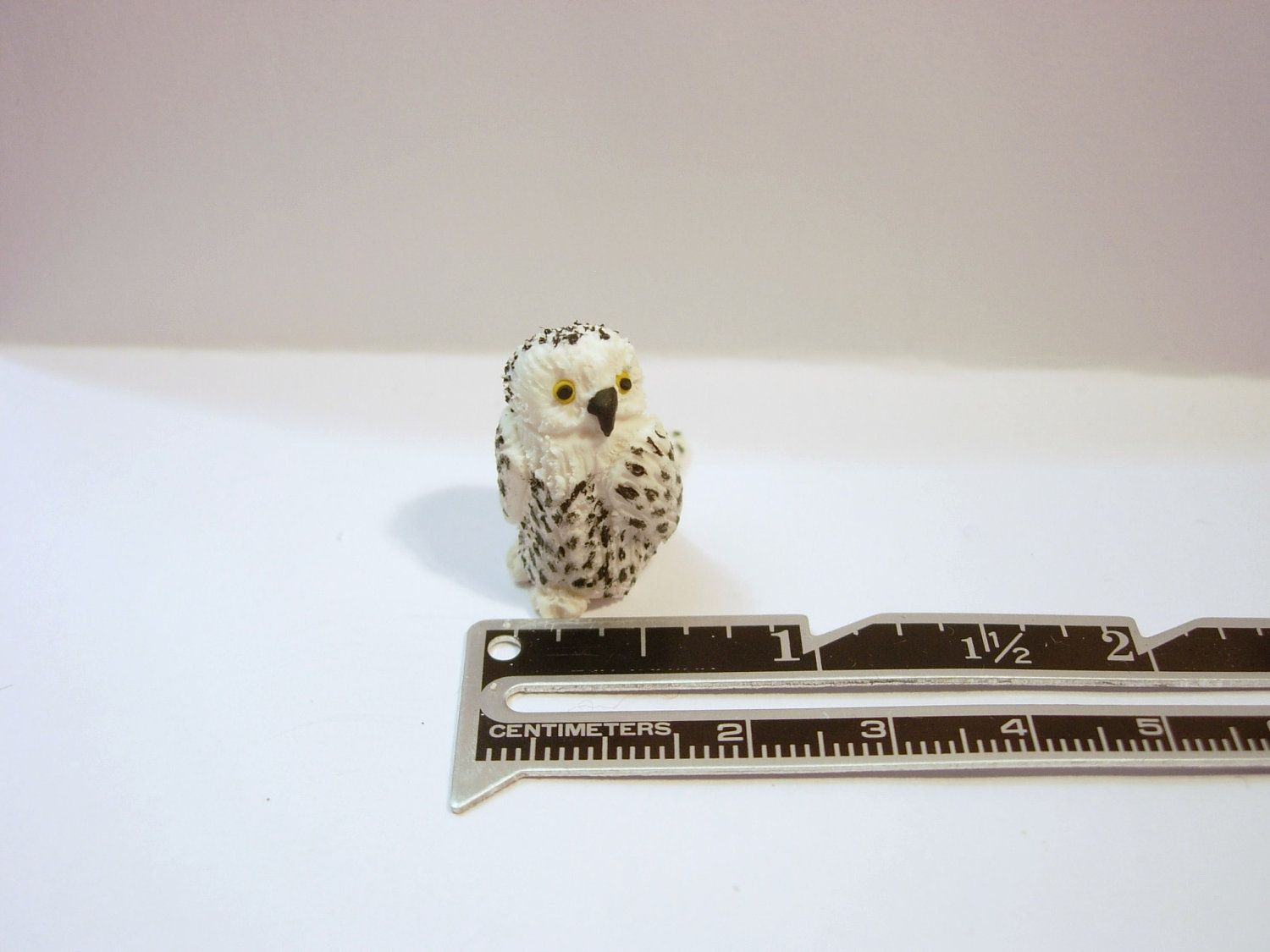 Owl Miniature Dollhouse Doll House Picture