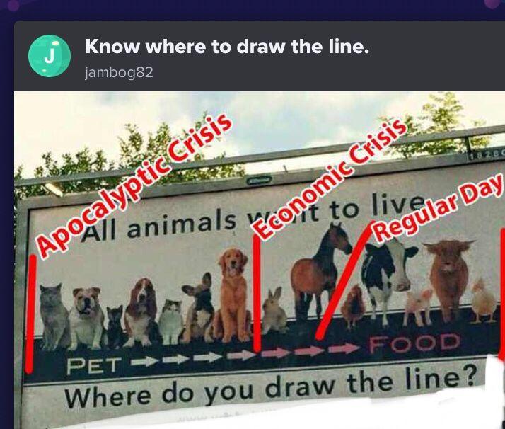Right Here Vegan Meme Where Do You Draw The Line Funny Vegan Quote Vegan Quotes Funny Funny Tweets Memes