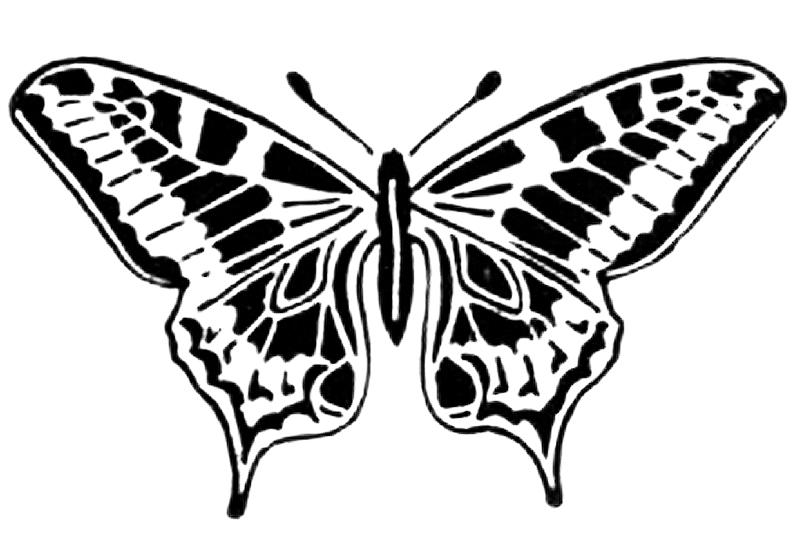 Schmetterling Basteln Schmetterlinge Aus Filz Papier Und Druckvorlagen Heimwerker De In 2020 Schmetterlinge Basteln Basteln Schmetterling