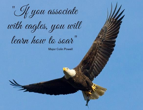 That Company You Keep Motivational Quotes For Success Eagle Pictures How To Better Yourself