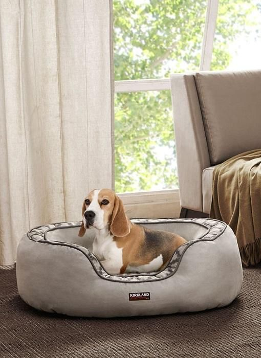 Costco Wholesale Dog Bed Your Pet Pets