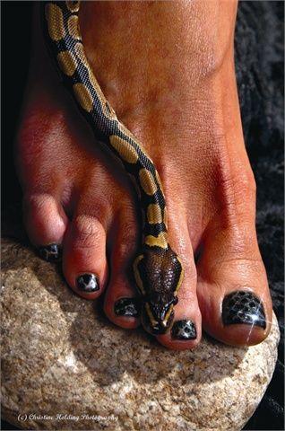 S-s-snakeskin Mani-Pedi | Beauty Secrets | Mani pedi, Pedi