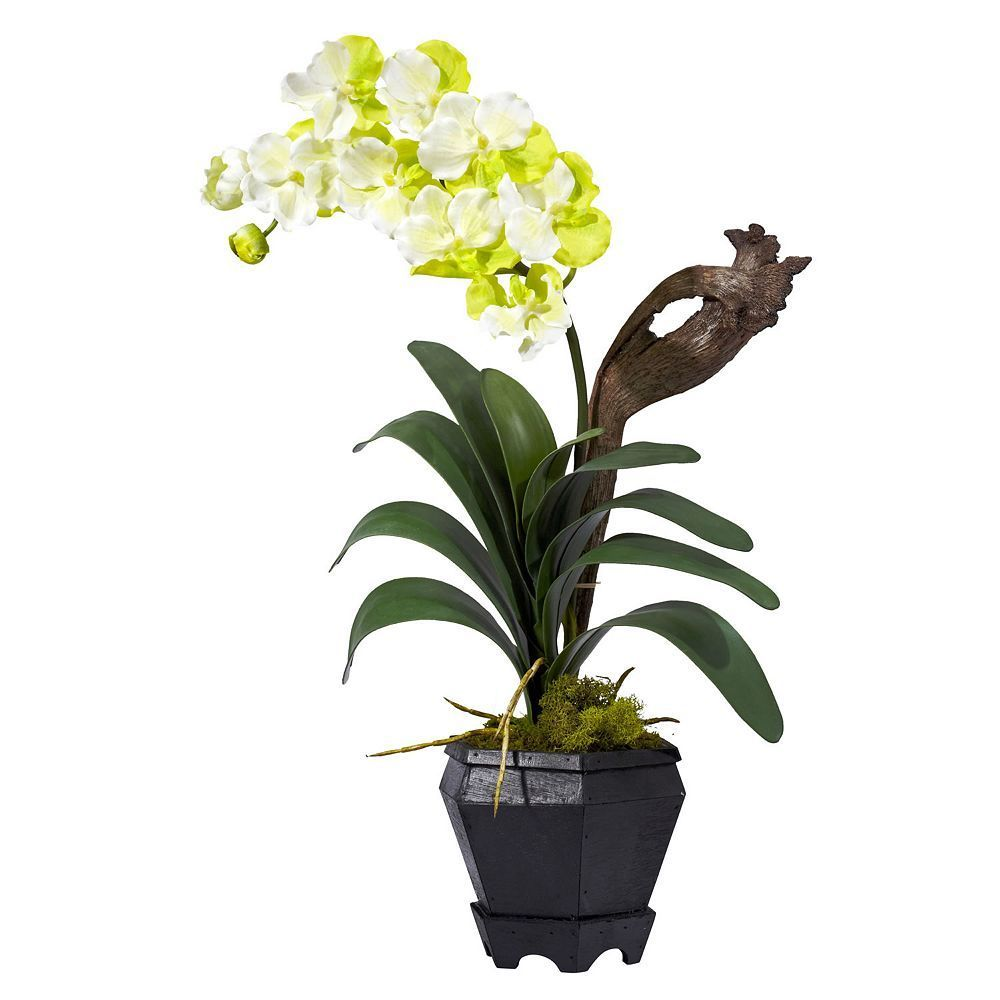 Nearly Natural Silk Vanda Floral Arrangement Multicolor Products
