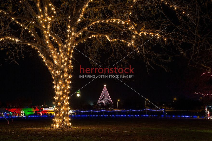 The Zilker Park Christmas Tree In Austin Texas This Is A Very Moving Place To Me Because It Holds So M Holiday Lights Display Austin Events Christmas Lights