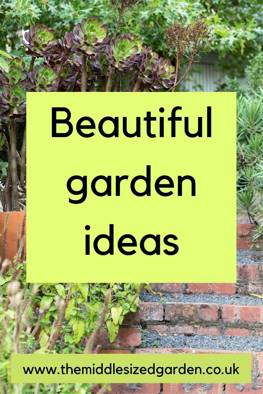 8 Beautiful And Unusual Medium Sized Garden Ideas In 2020 Easy