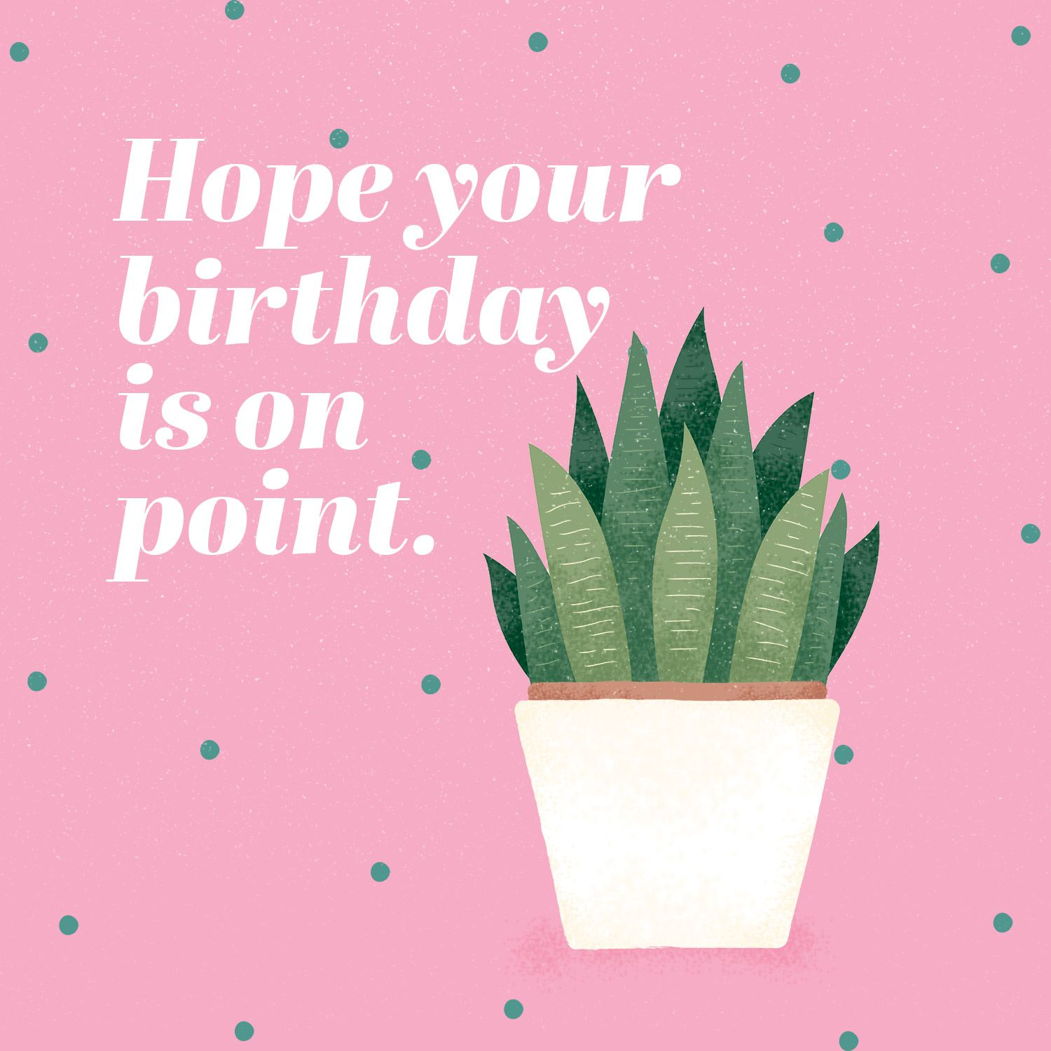 50 plant and cactus puns for your inner plant lady