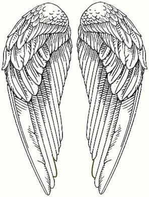 Ailes d 39 ange illustrations pinterest ailes de poulet - Ailes d ange dessin ...