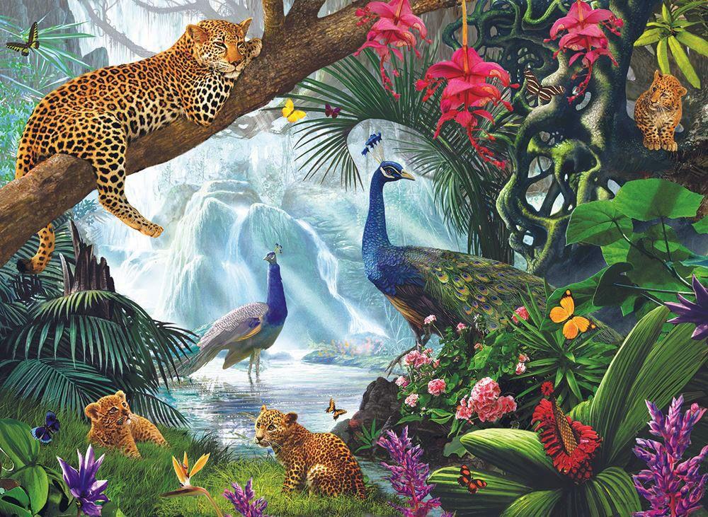 Картинки джунглей животные