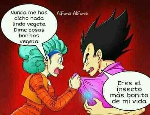 Pin De Gabriel Z Z N F En Memes De Dragon Ball Vegeta Y Bulma Imagenes De Vegeta Bulma
