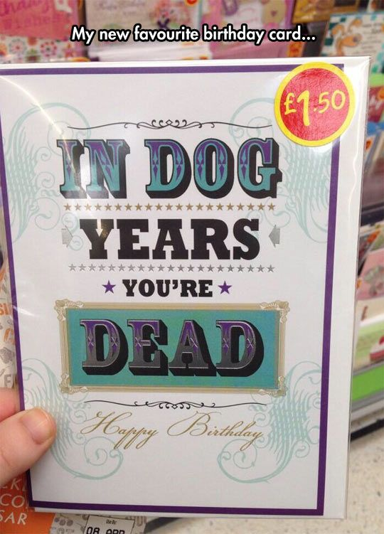 Birthday Cards Are A Dog Eat Dog Kind Of World Birthday Cards Funny Birthday Cards Birthday Humor