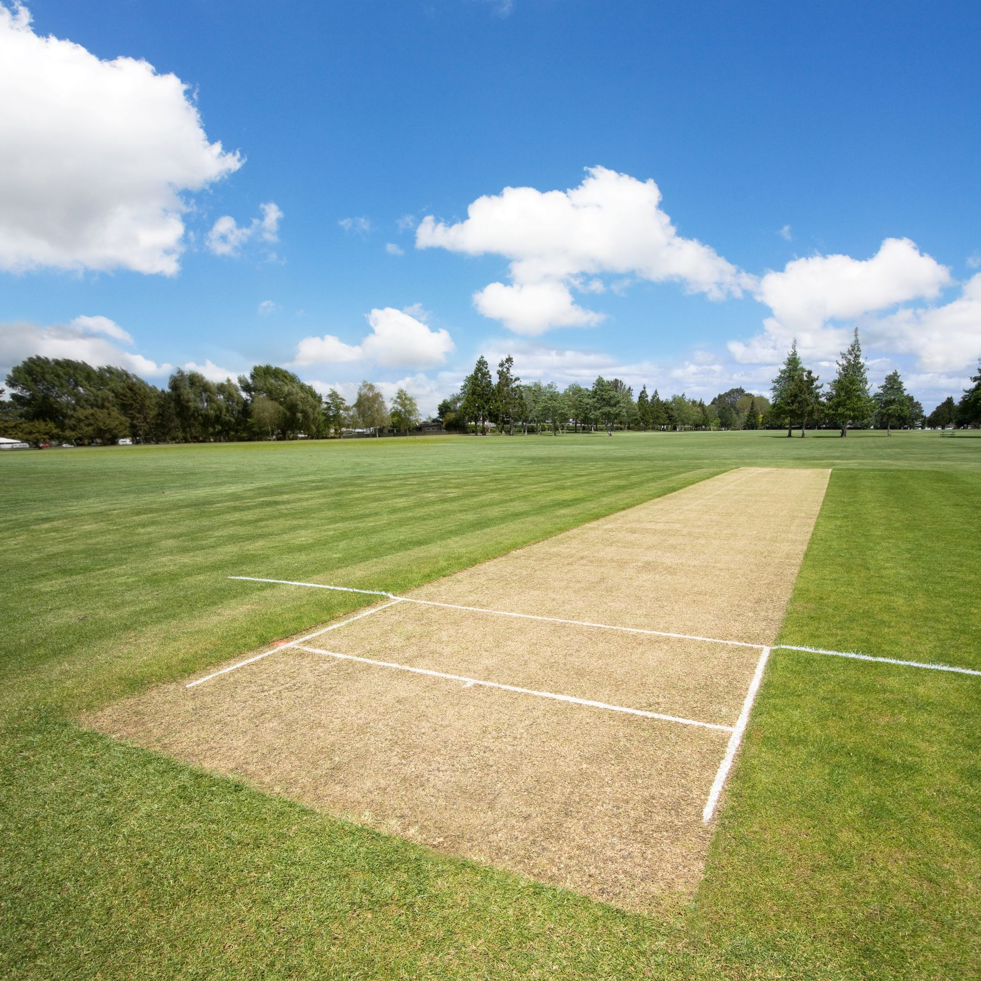 Cricket pitch in the sports park background with copy