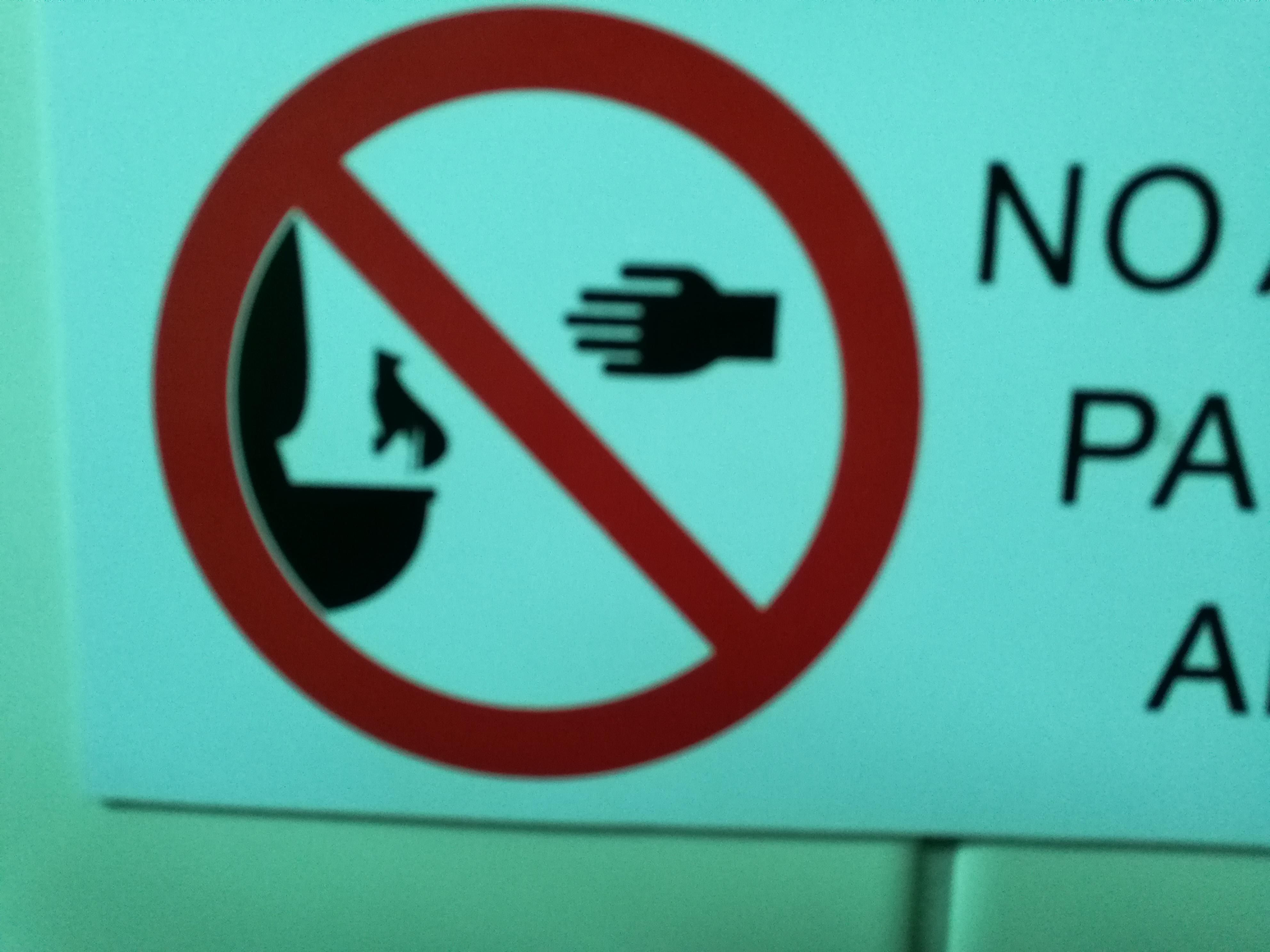 Please do not throw cats in the toilet.
