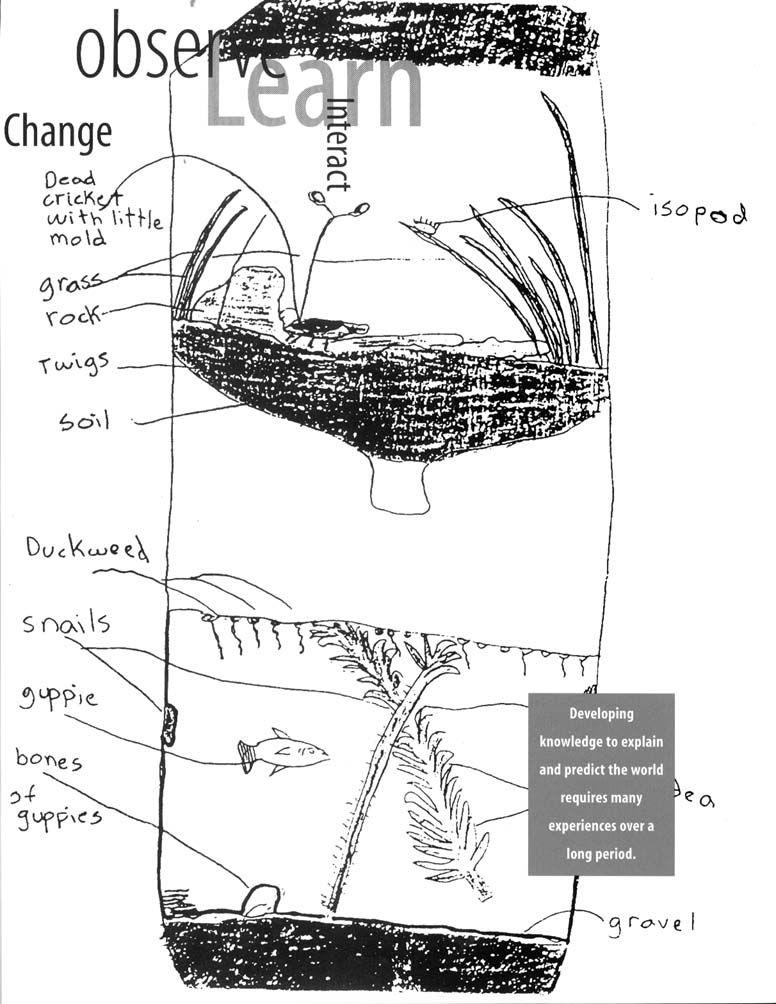Httpsewiringdiagram Herokuapp Compostprecipitation Reactions