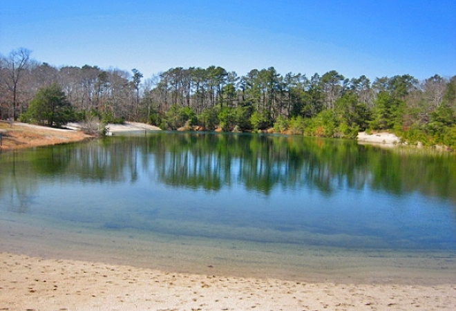 Sea Pines Rv An Encore Resort At Swainton New Jersey United States Passport America Discount Camping Club Camping Locations Camping Club Camping