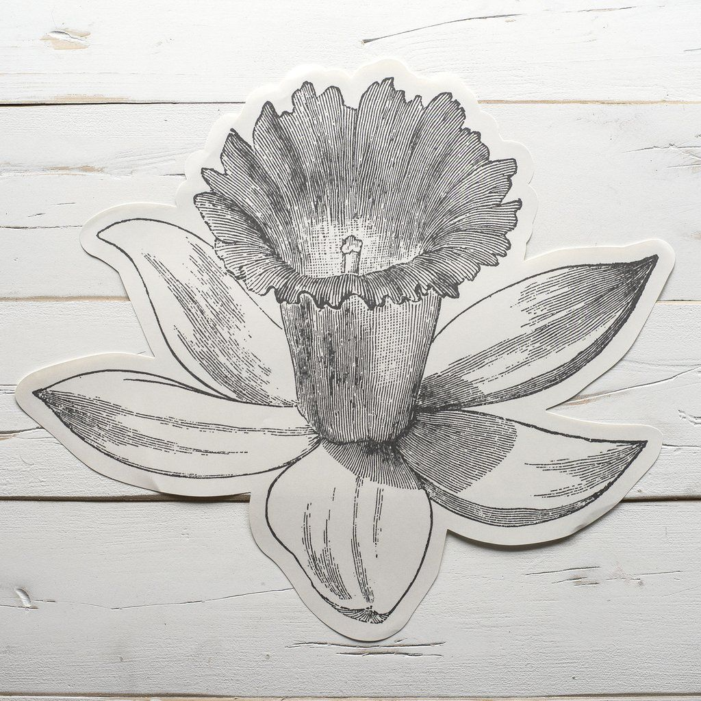 Daffodil diecut paper coloring placemat sheets emerson sloan