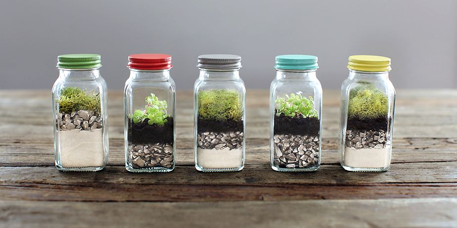 Earth Day Craft: DIY Terrarium | A Bullseye View: 1. sand 2. pebbles 3. soil 4. plant  It's important to pack down the soil really well to prevent air pockets from forming. Since this container is so small, you can make your own mini gardening tool with a skewer and small cork attached to the end to pack down the soil.