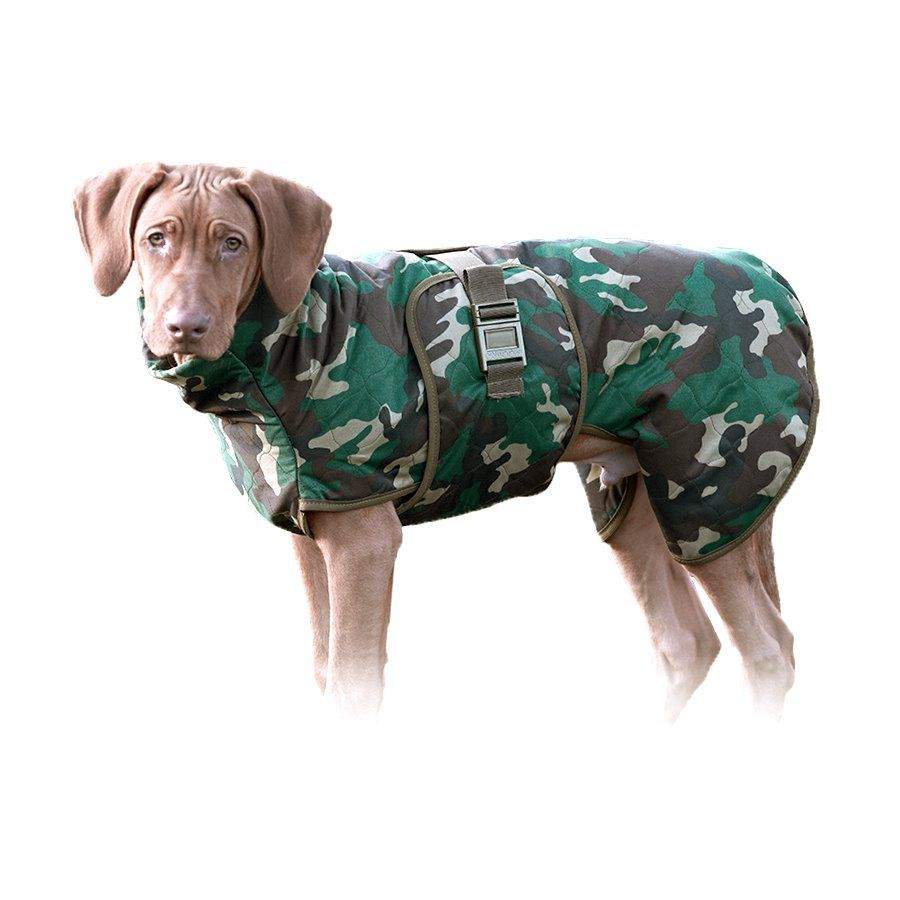 Hundemantel WetDog - jetzt in Camouflage - der vermutlich weltbeste ...