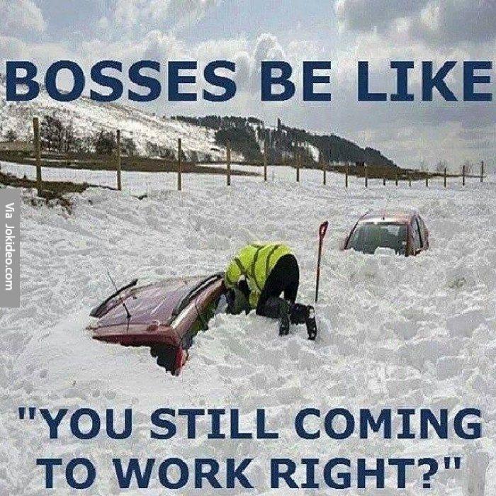 Funny Boss Memes - The best boss memes online Snow meme, Memes - küche neu bekleben