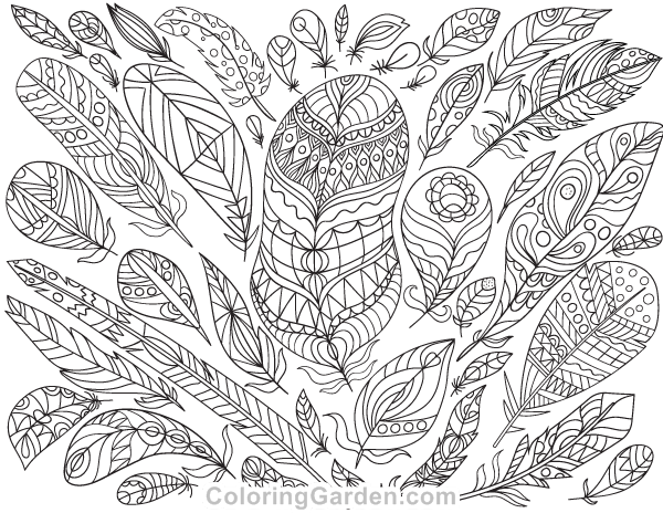 Free Printable Feathers Adult Coloring Page Download It In PDF Format At Coloringgarden