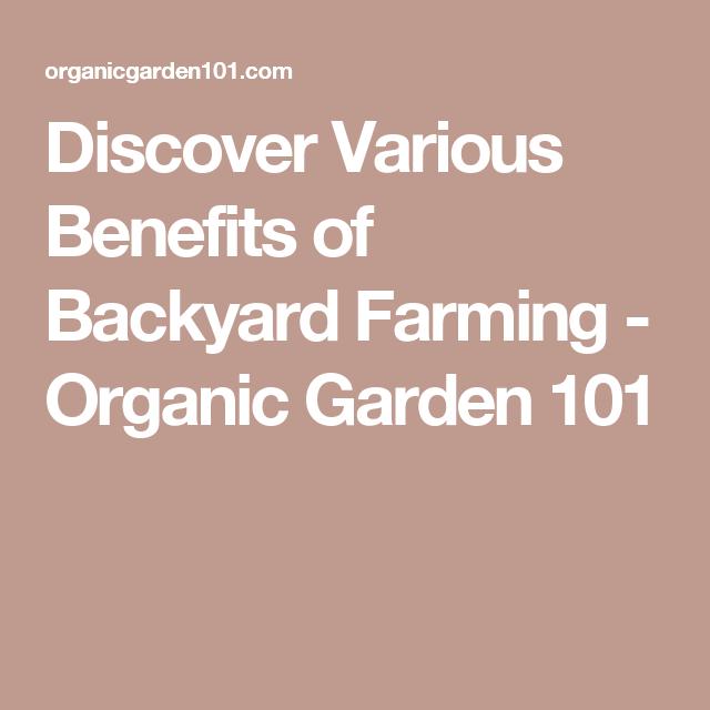 Discover Various Benefits Of Backyard Farming