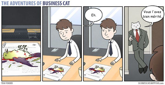 Crédit photo : Business cat