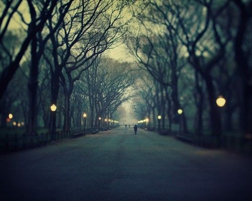 romantic stroll in the park... beautiful place and it would be sooo much better in winter while it snows