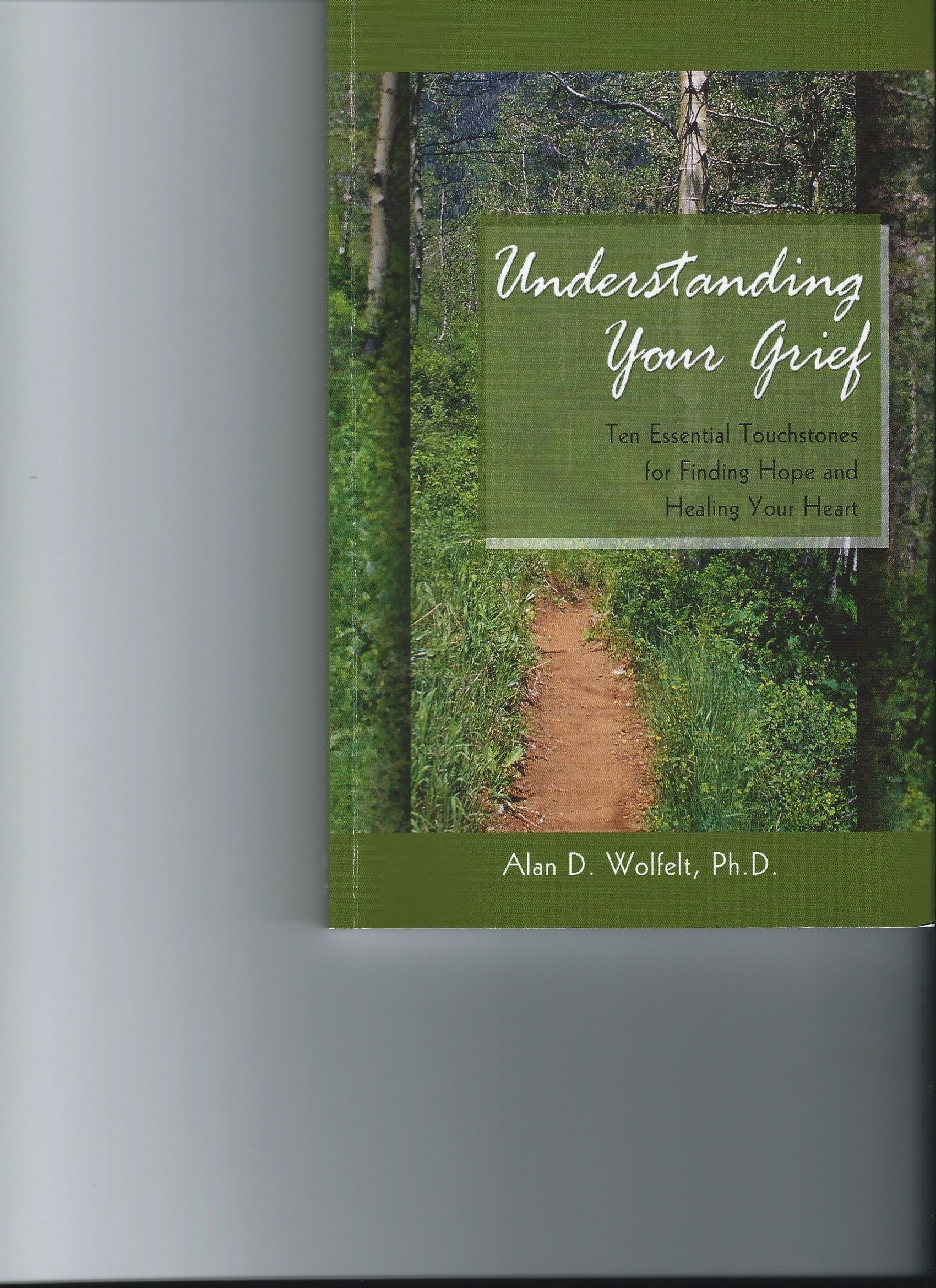 Understanding your grief alan d wolfelt phd books worth