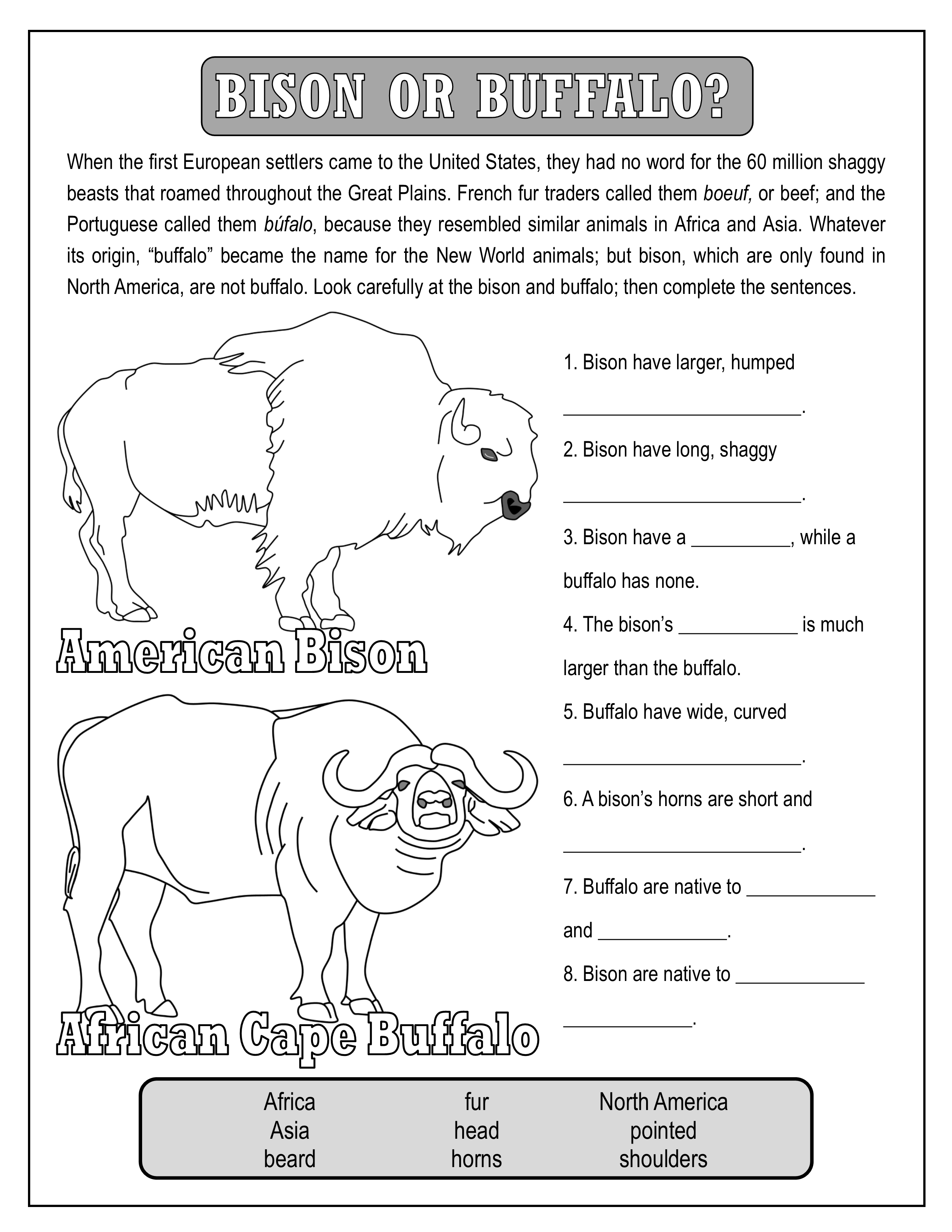 Native American Activity Pack