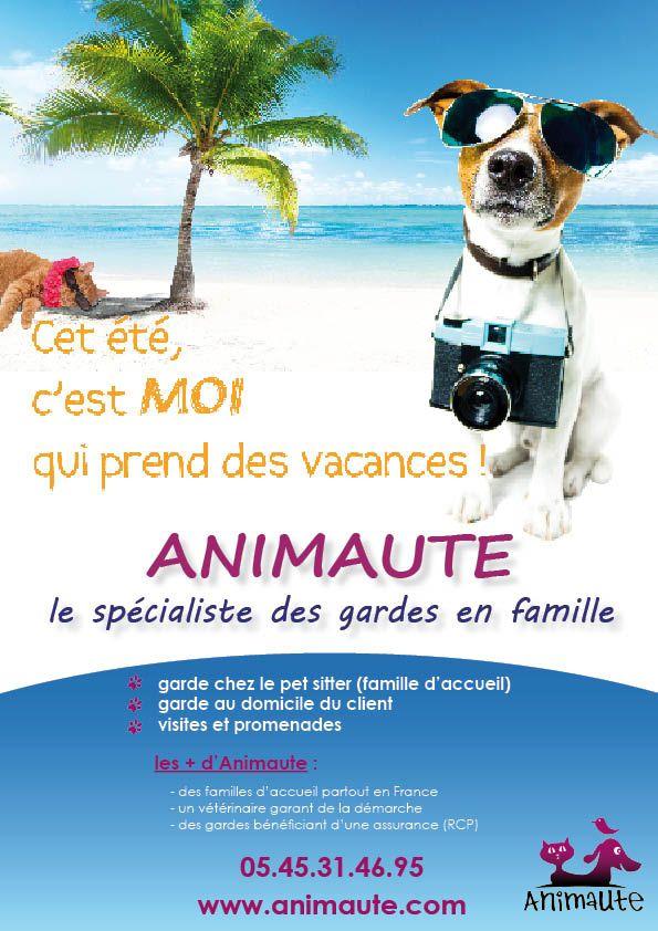 Pin by Juju PoyPoy on Dogs, cats, petsitting | Pinterest | Pet ...