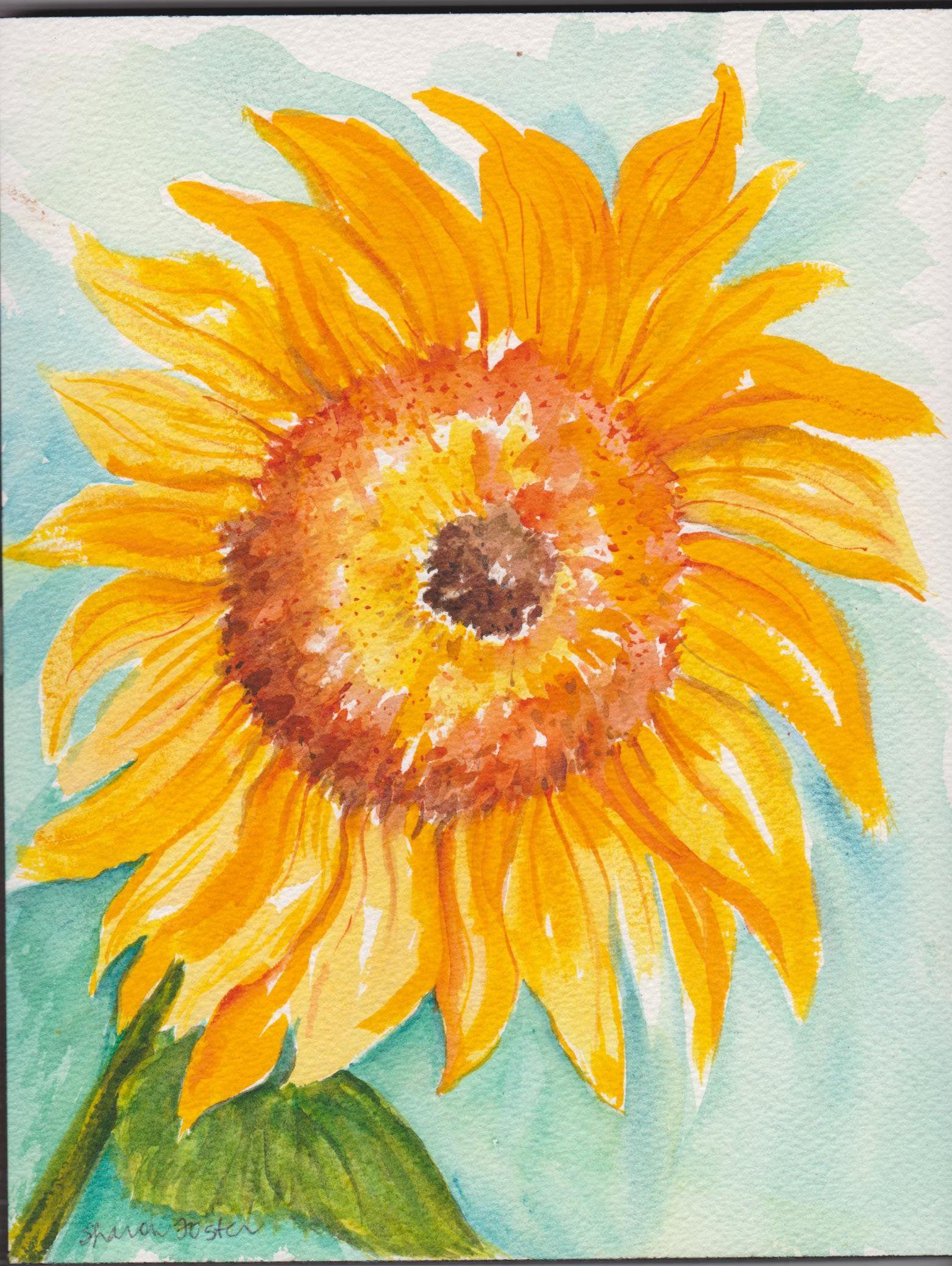 Sunflower Watercolor Painting Original 8 X 10 Flower Sunflower