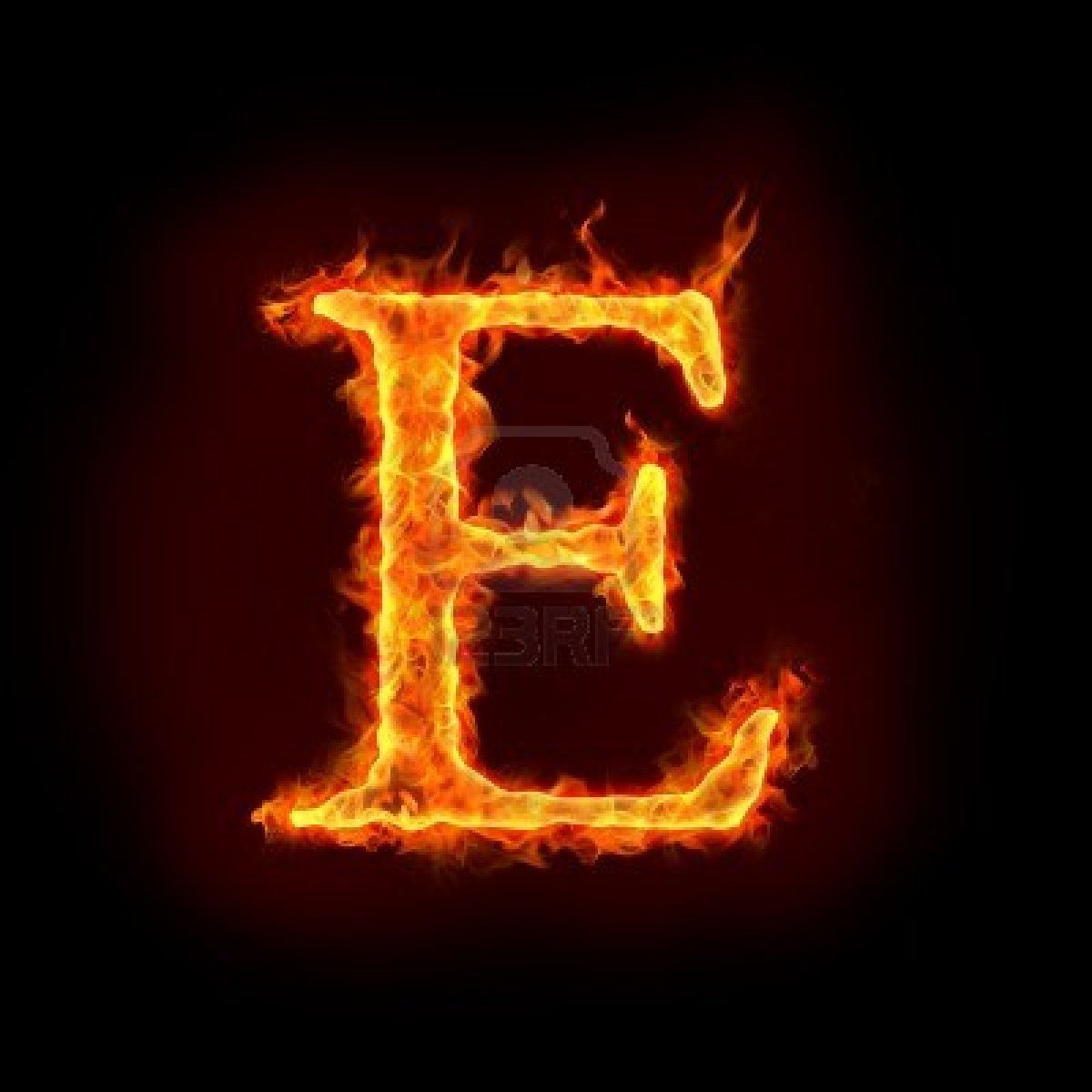 The Letter E | Typography Design