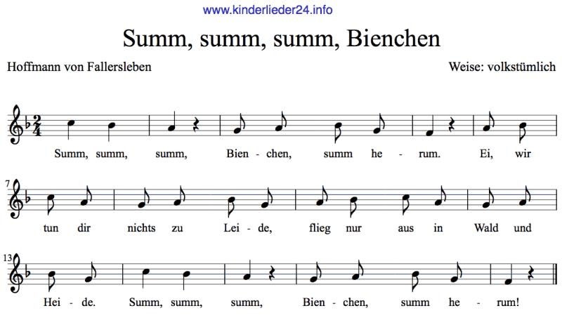 Kinderlieder Noten | Kinder lied, Kinderlieder, Musik lernen