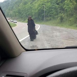 Over the past week, residents throughout East Tennessee have reported seeing a woman dressed in a black shroud wandering the highways and roads. On Saturday, sightings were reported in Rhea County, leading many to question, just who is the mysterious 'Woman in Black'? Southern Appalachia is filled with tales of ghosts and other myths. From the haints that haunt the Smoky Mountains that are said to appear as black mists to the Cherokee legends of the Yunwi Tsunsdi ...