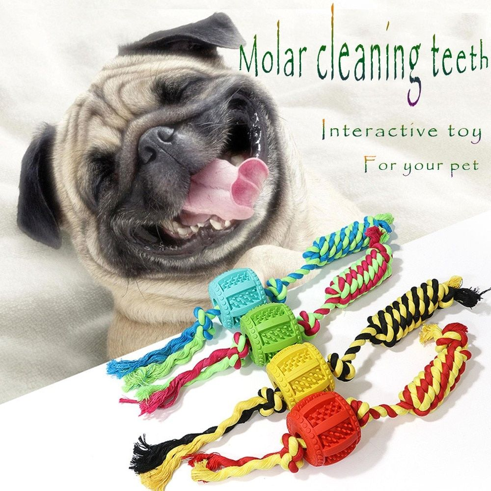 Dog Molar Stick Durable Biting Rubber Ball Tooth Brush Teeth Cleaning Stick 9 26 Dog Toy Ball Dog Toys Dog Ball