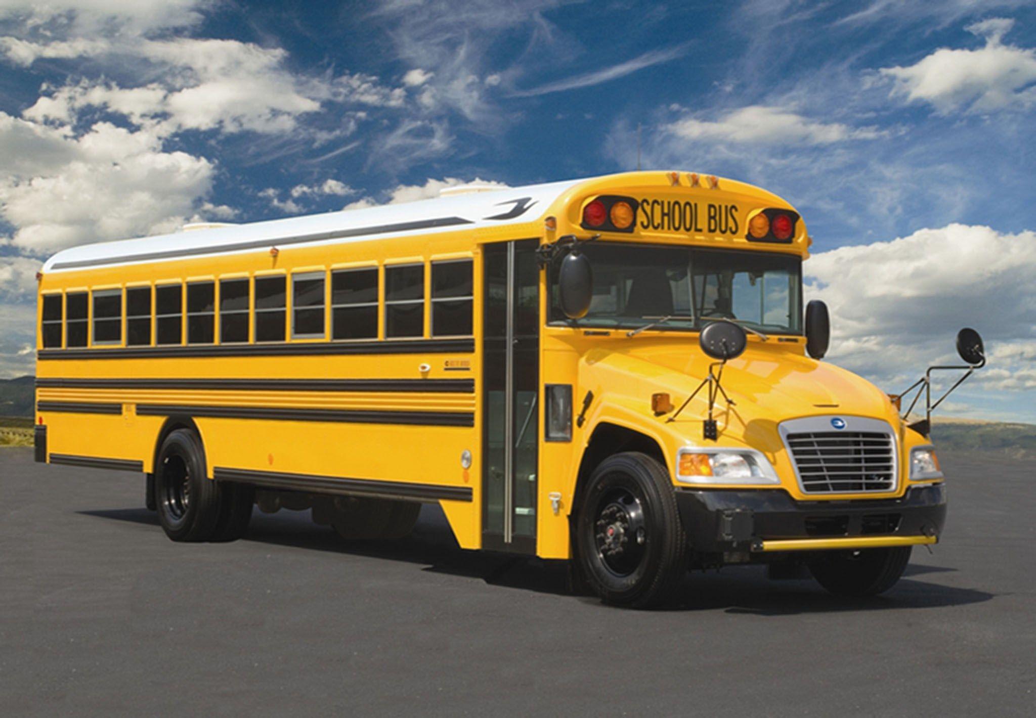 School Bus Wallpaper School Bus Yellow School Bus Bus