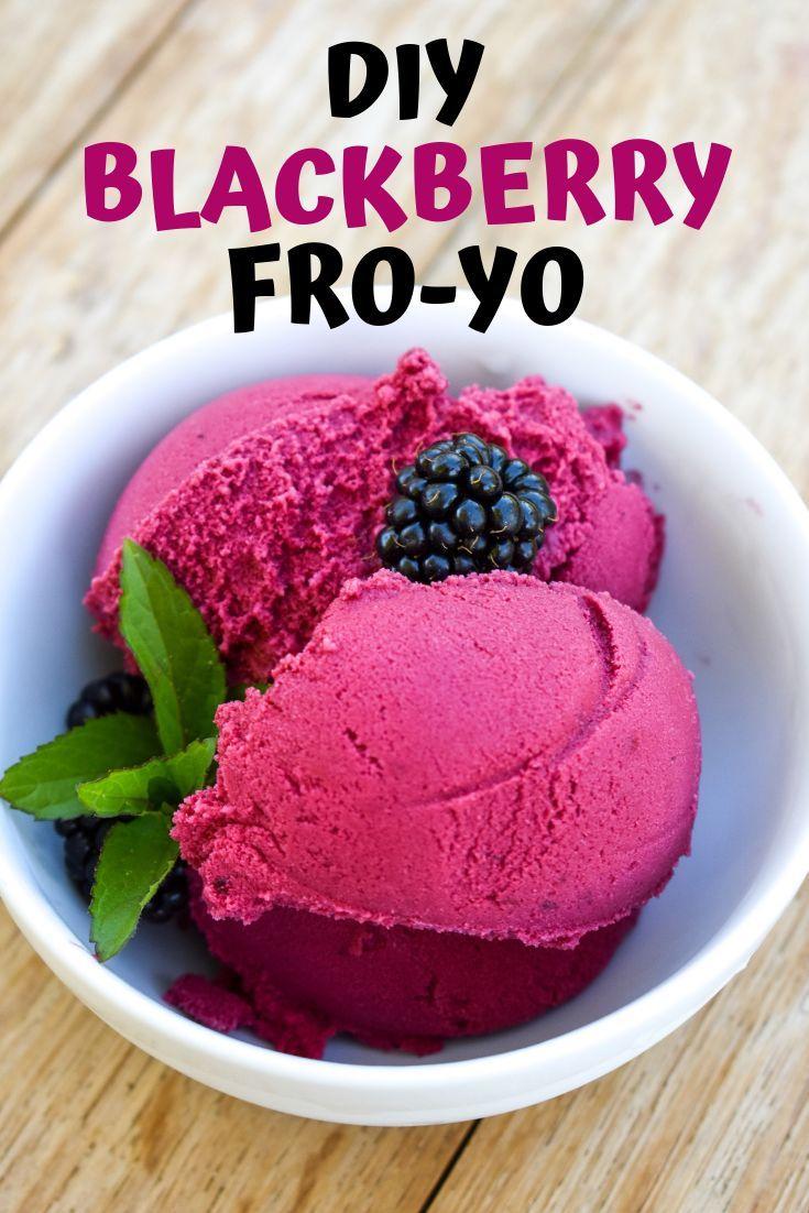 Healthy Blackberry Frozen Yogurt Recipe Recipe Frozen Yogurt Recipes Frozen Yogurt Yogurt Recipes