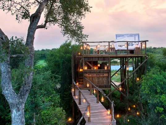 Luxury Tree House Resort Green Design, Eco Sustainable African ... on diy tree house designs, awesome tree house designs, deck designs, luxury offices designs, luxury walk-in shower designs, luxury furniture designs, luxury camping canvas tent, two tree house designs, adult tree house designs, 2 story tree house designs, contemporary tree house designs, luxury bathrooms designs, luxury apartments designs, luxury swimming pools designs, luxury kitchens designs, luxury home designs, ultimate tree house designs, luxury house plans designs, single tree house designs, custom tree house designs,