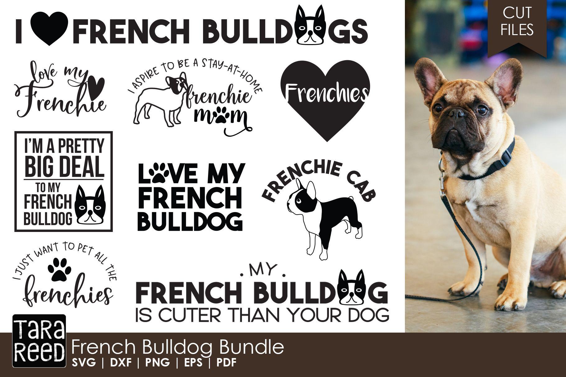 French Bulldog Bundle French Bulldog French I Am Game