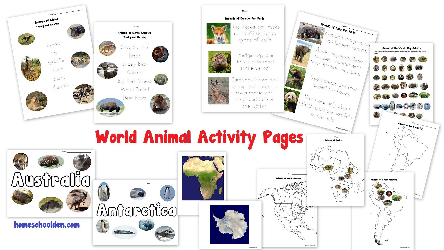 World Animals Activities Board Game Amp Pin Map